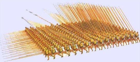 Bitwa pod Kynoskefalaj