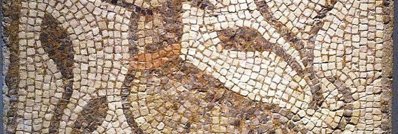 A dog on the Roman mosaic