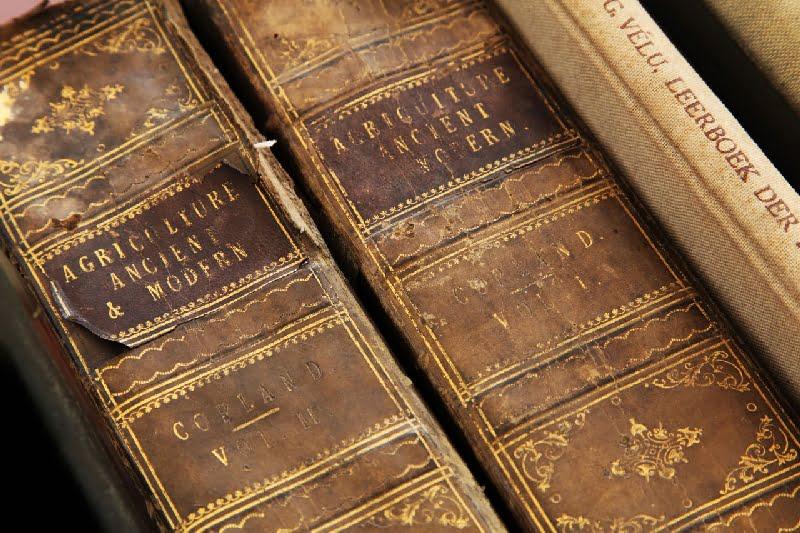 Wydawanie książek w Rzymie