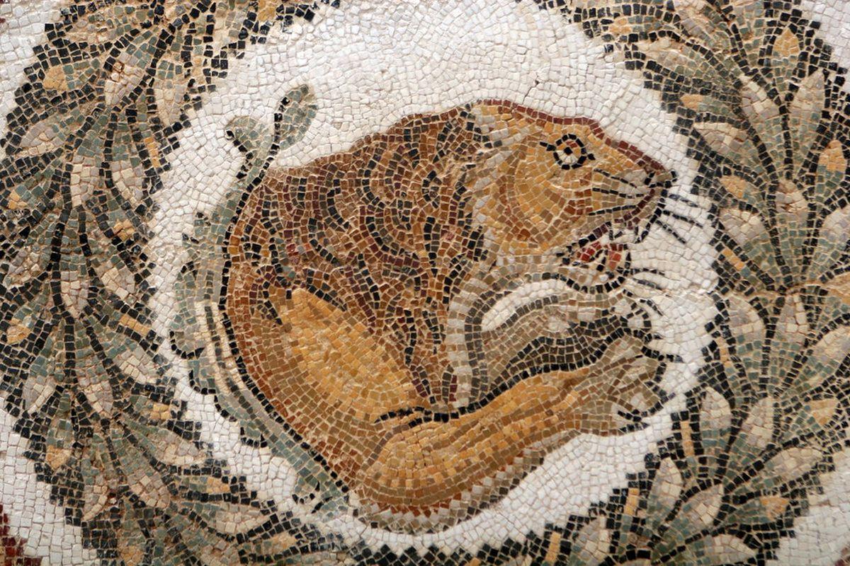 Mozaika ukazująca lwa