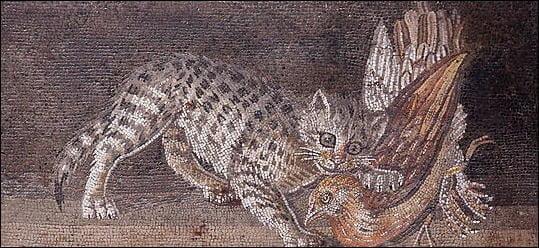 Cat on the Roman mosaic