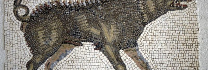 Wild boar on the Roman mosaic