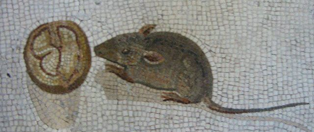 Roman mosaic showing a mouse eating a nut