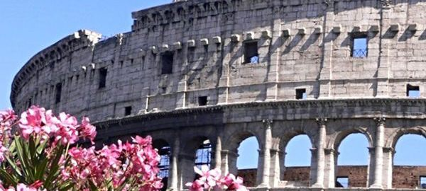 Flowers around the Colosseum