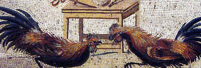 Fighting roosters on the Roman mosaic