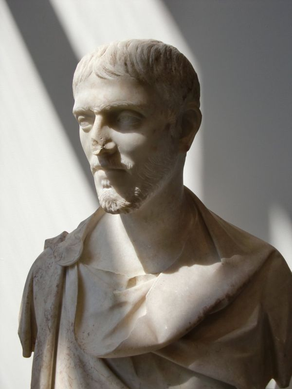 Magnificent marble bust of young Roman