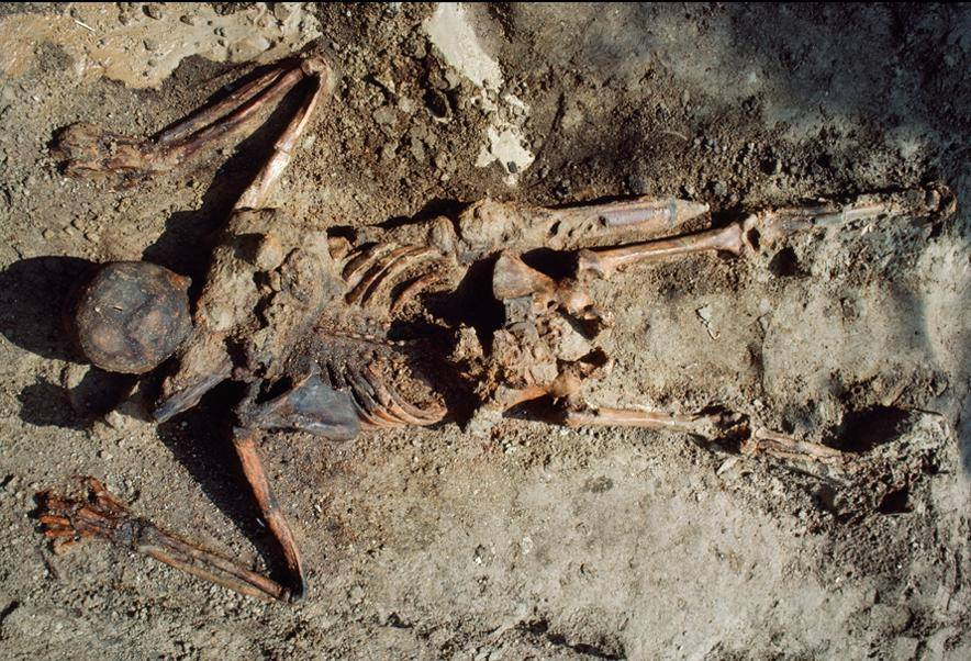 Skeleton of Roman soldier