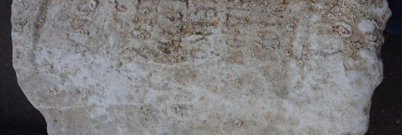 Nurkowie przypadkowo odkryli rzymską inskrypcję sprzed 1900 lat