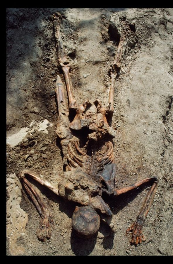Skeleton of Roman soldier from under Vesuvius