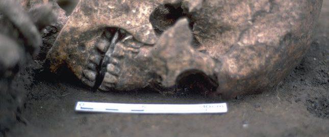 Archeolodzy przebadali szkielet mężczyzny z kamieniem zamiast języka