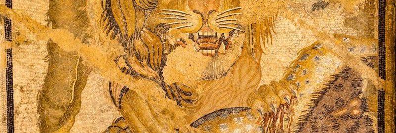 Piękna rzymska mozaika ukazująca lwa w walce z leopardem