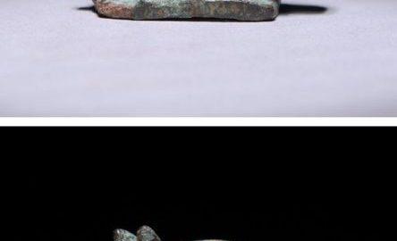Urocza rzymska figurka ukazująca koszatkę