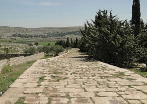The road leading from Antioch to Aleppo.