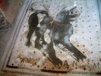 Floor with the inscription cave canem