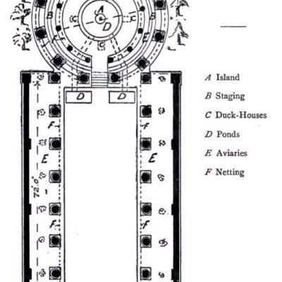 Plan ptaszarni w Casinum