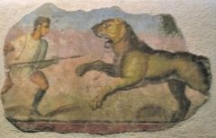 A gladiator fighting with a lion