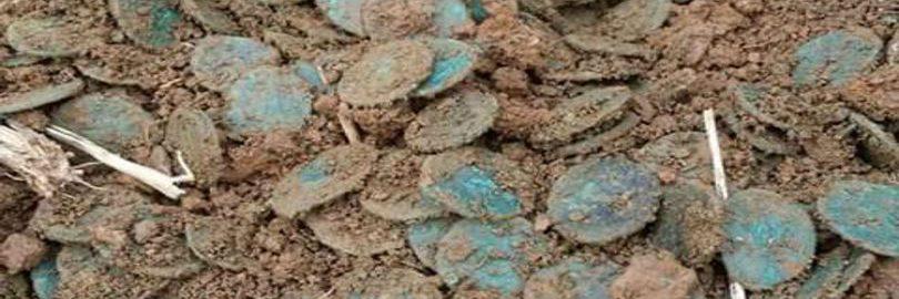 Dwaj poszukiwacze skarbów odkryli niemal 2000 monet