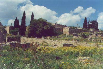Ruiny rzymskich willi w Kartaginie