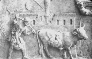 Relief ukazujący rzymskiego rolnika i krowę