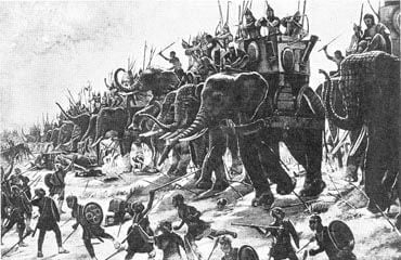 Attack of the Hannibal elephants