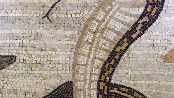 Roman mosaic shows cobra