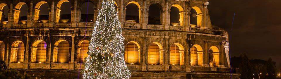 Choinka przed Koloseum