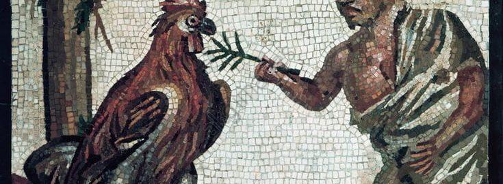 Karzeł i kogut na rzymskiej mozaice