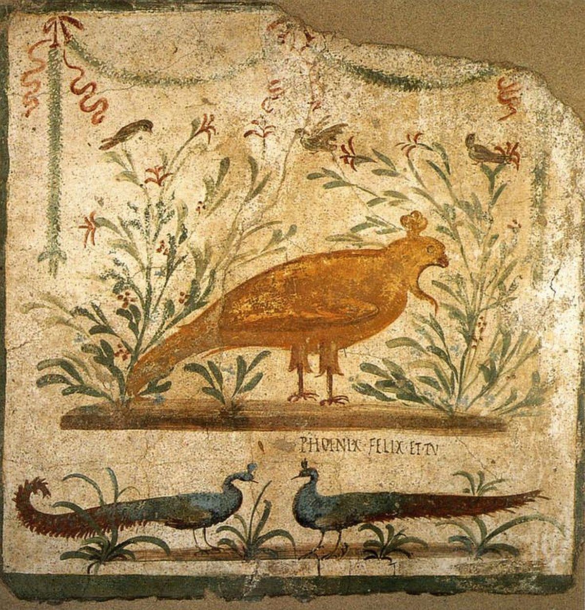 Feniks na rzymskim malunku