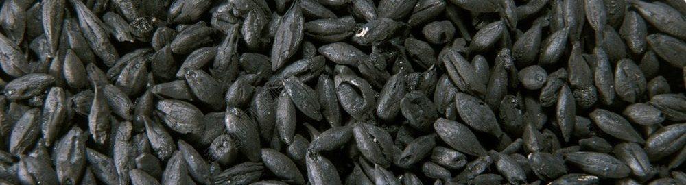Spalone nasiona z Pompejów