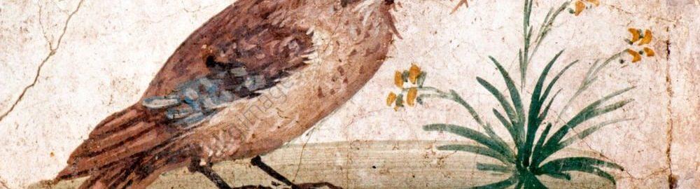 Piękny rzymski fresk ukazujący ptaka