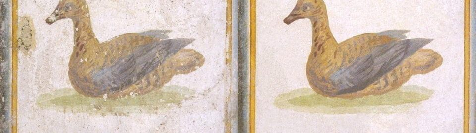 Duck on a Roman fresco after reconstruction