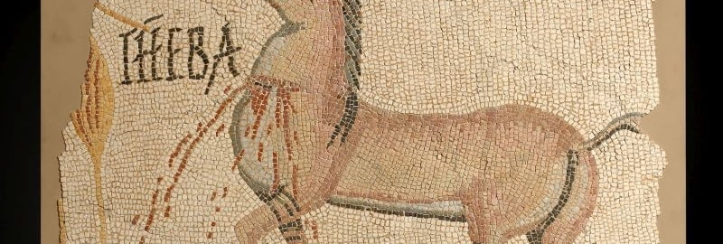 Roman mosaic with a wounded horse