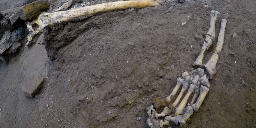 In Pompeii were discovered 5 skeletons