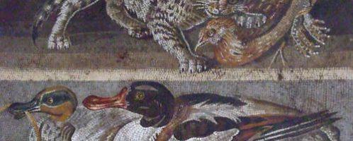 Mozaika z Domu Fauna