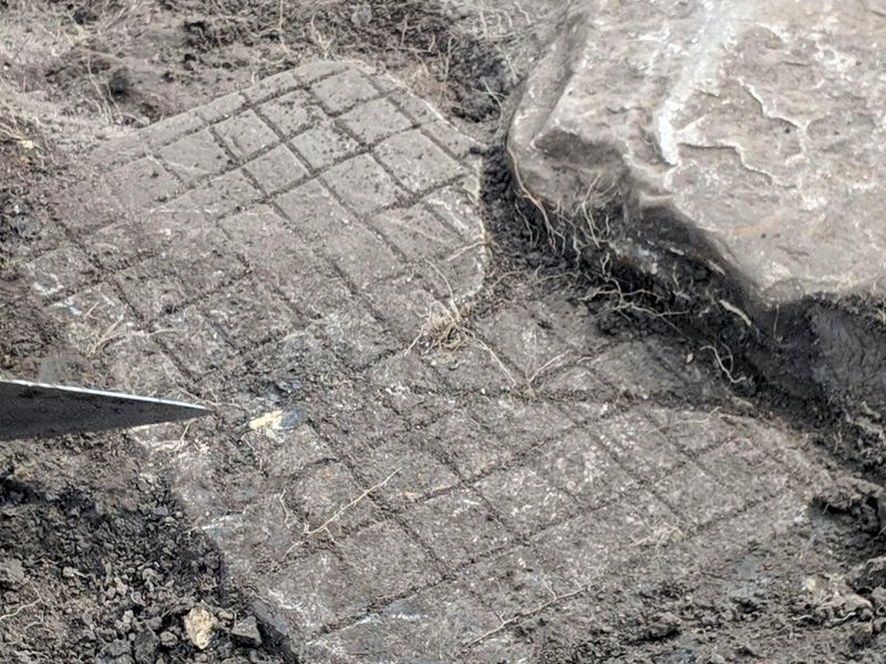 Roman board game discovered in Vindolanda