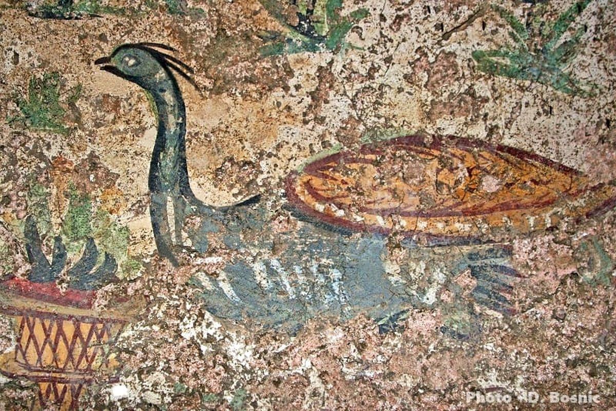 Rzymski fresk pawia