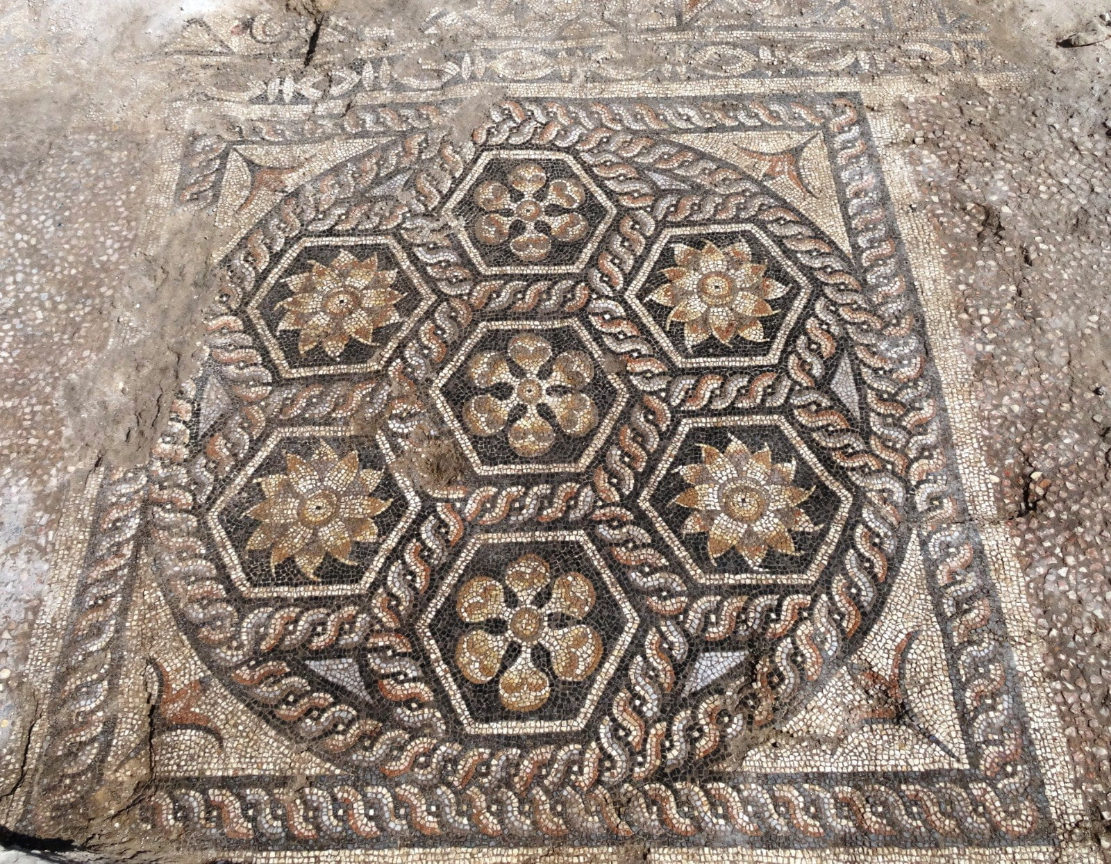 Roman mosaic was discovered in mosaic