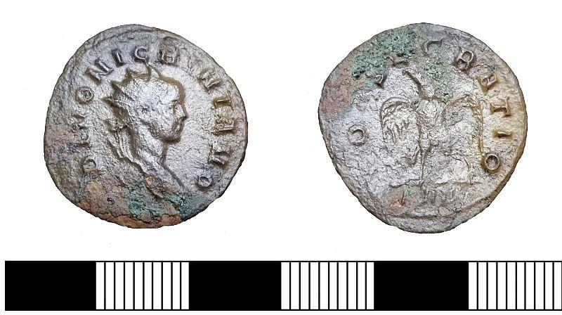A Polish treasure hunter discovered a Roman coin by Marcus Aurelius  Nigrinianus