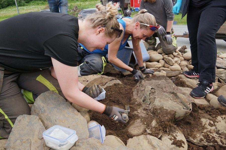 W Norwegii odkryto rzymski kociołek