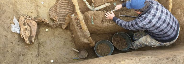 Odkryto rzymski rydwan z końmi w Chorwacji