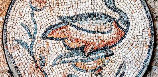 Duck on the mosaic