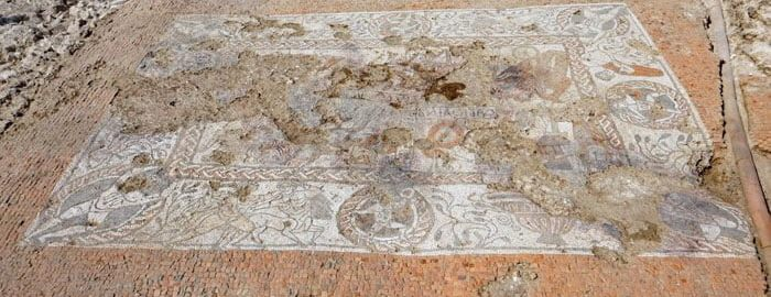 The Roman mosaic in East England was fully exposed