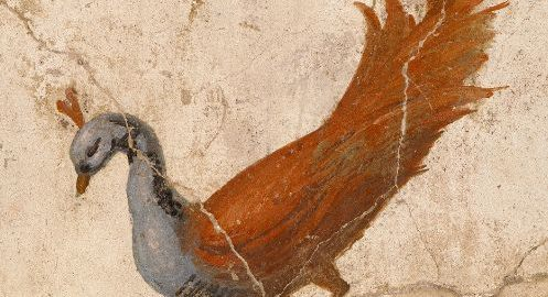 Roman fresco showing a peacock