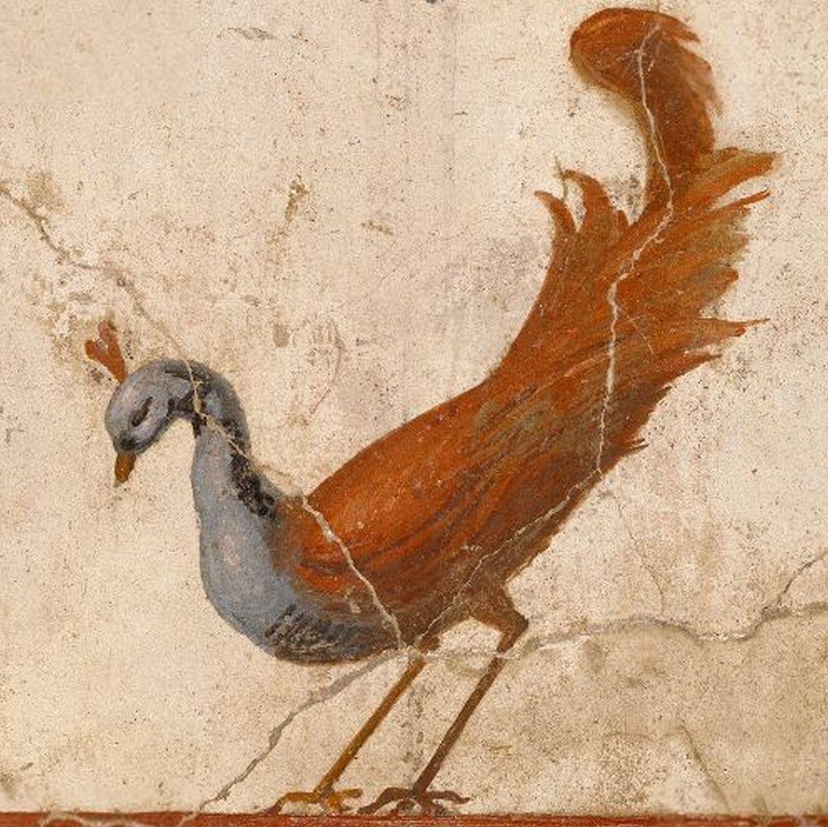 Rzymski fresk ukazujący pawia