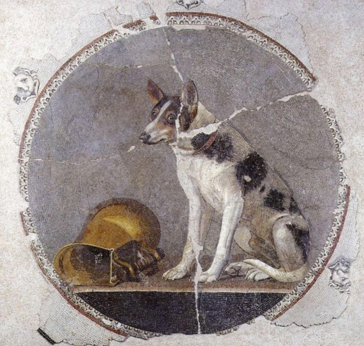 Mozaika przedstawiająca siedzącego psa