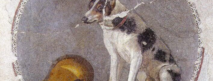 A wonderful mosaic showing a dog with a golden vessel