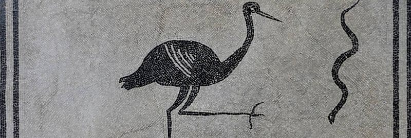 A black and white Roman mosaic showing a stork