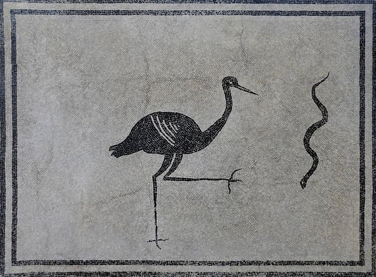 Czarno-biała mozaika rzymska ukazująca bociana