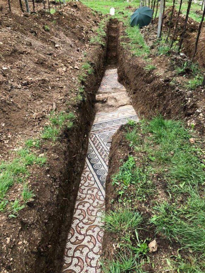 Odkryto rzymską mozaikę na terenie winnicy