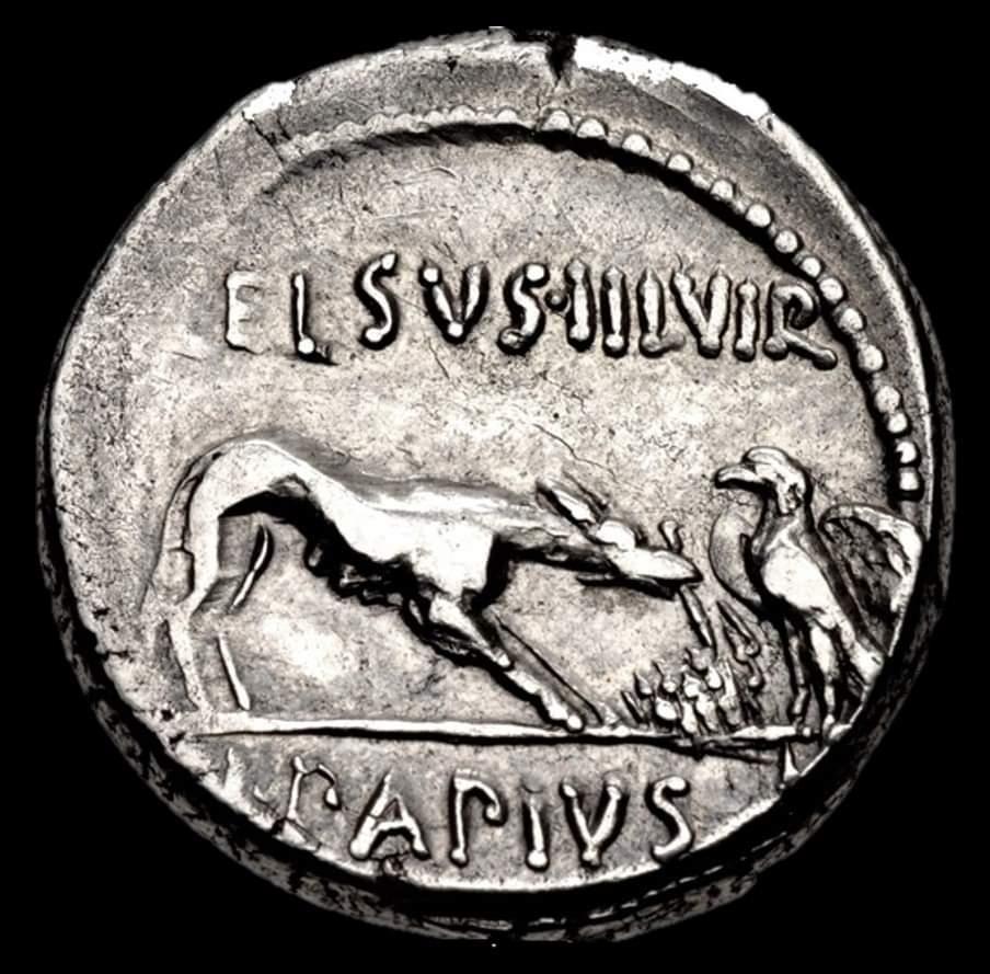 Orzeł i wilk na rzymskiej monecie